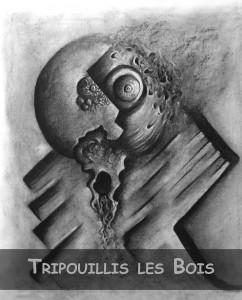 Koubbi_Art_Accueil_Tripouillis